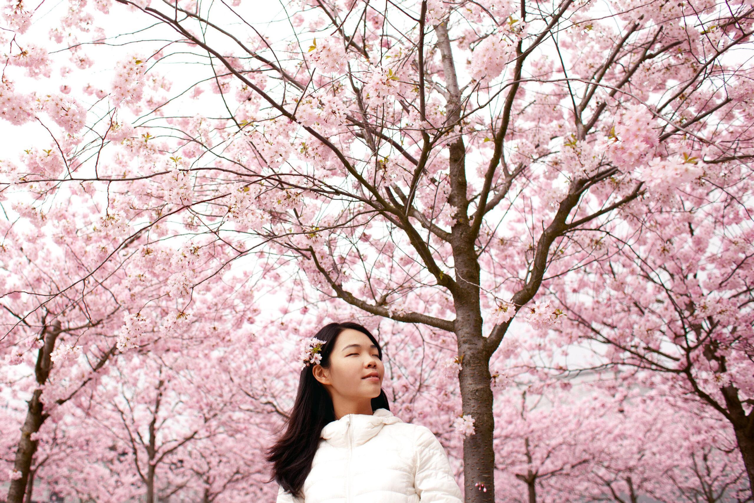 Girls Under Pink Blossoms